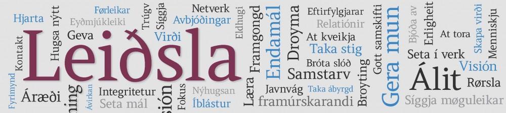 Bloggur um leiðslu og innovatión